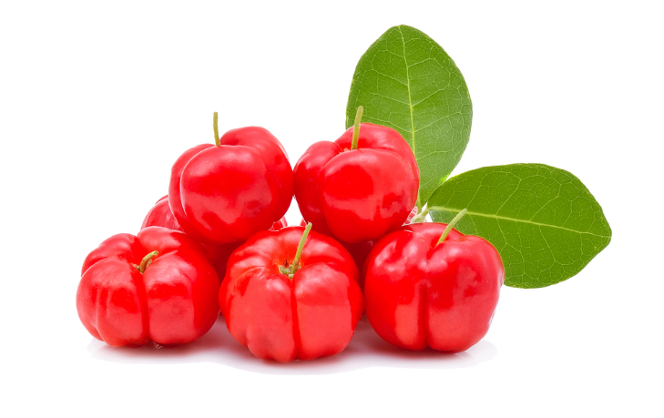 organixx collagen Acerola Cherry